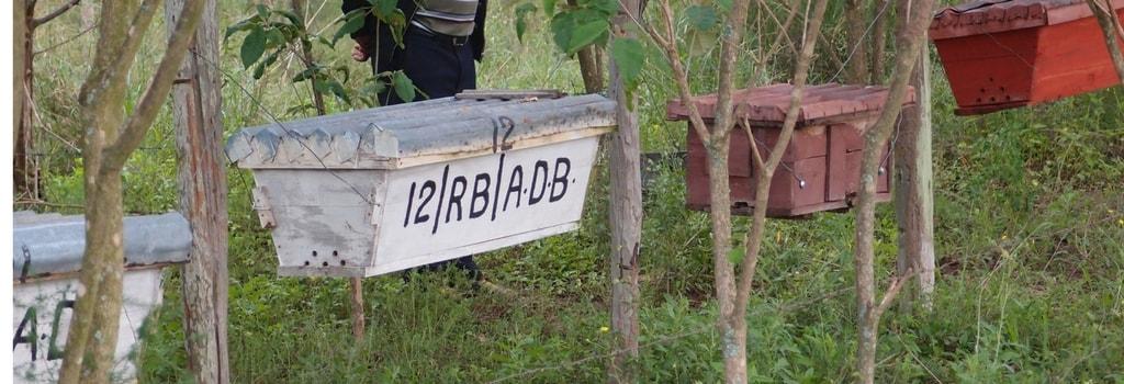 Visit to Kenya by Abdul Miah