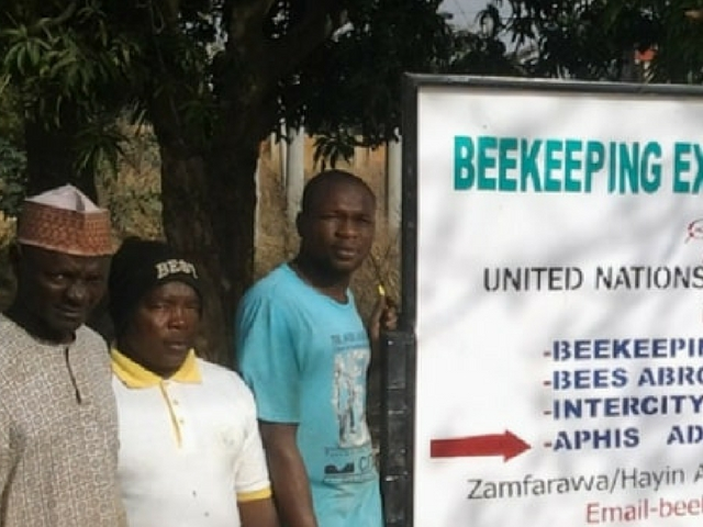 United Nations funds beekeeping in Nigeria