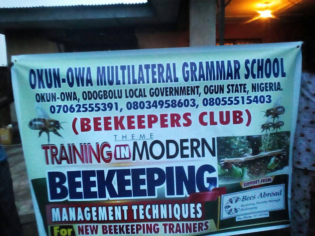 INTO Giving – funds beekeeping in Odogbolu district, Nigeria