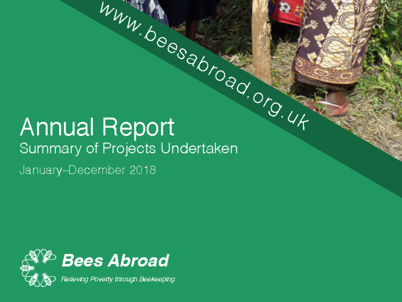 Annual Project Report 2018