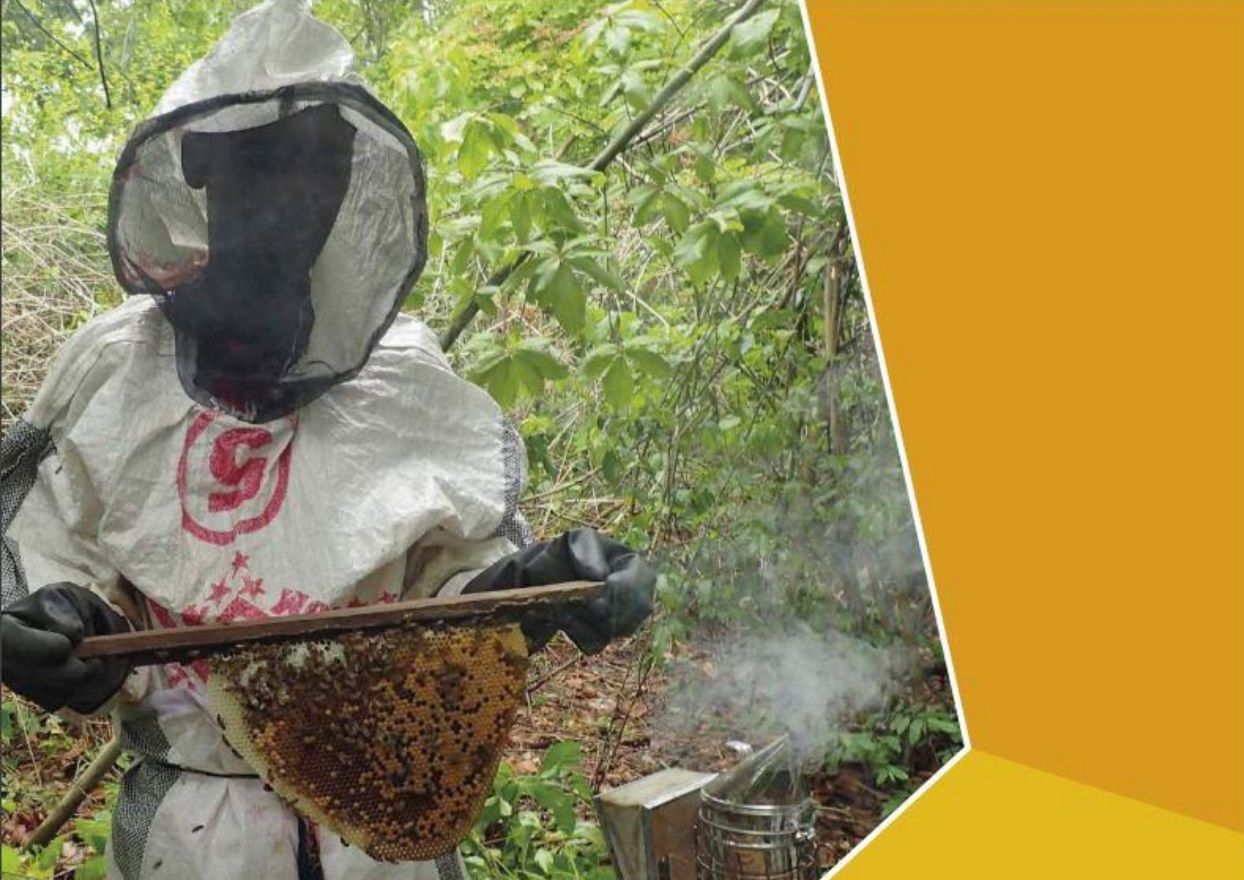 Free Downloadable Beekeeping Manuals
